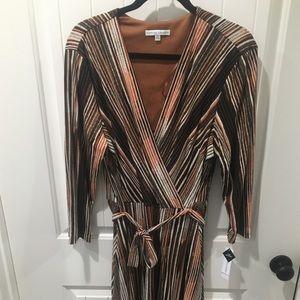 NWT Sandra Darren Dress